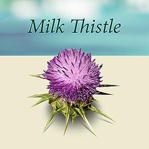 milk thistle extract liver cleanse capsules detox baby bathtub health best pills dinosaur toys