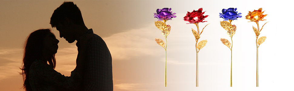 There is red, blue, gold and purple rose for your wide choice