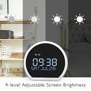 4 level adjustable display brightness