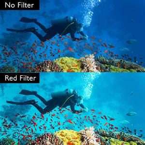 diving, underwater
