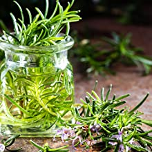 Organic Natural Skincare Face Rosemary Essential Oil Healthy Fresh Facial Plant Extract Flower Clean