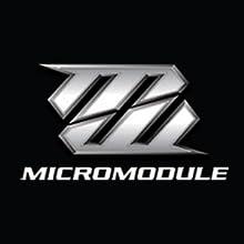Micromodule