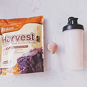 plant based protein