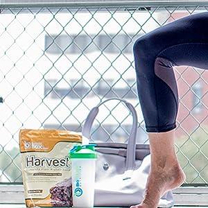 harvest plant based protein yoga
