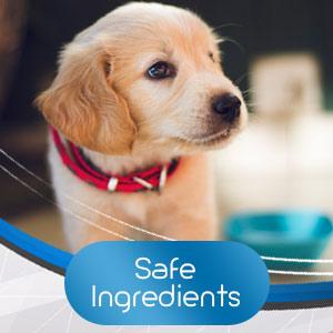 hemp oil for pets hemp oil dogs hemp for dogs ultra oil for dogs pet hemp oil hemp treats for dogs