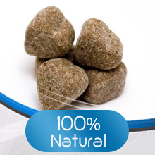calming bites for dogs anti anxiety for dog dog separation anxiety pet calming products for dogs