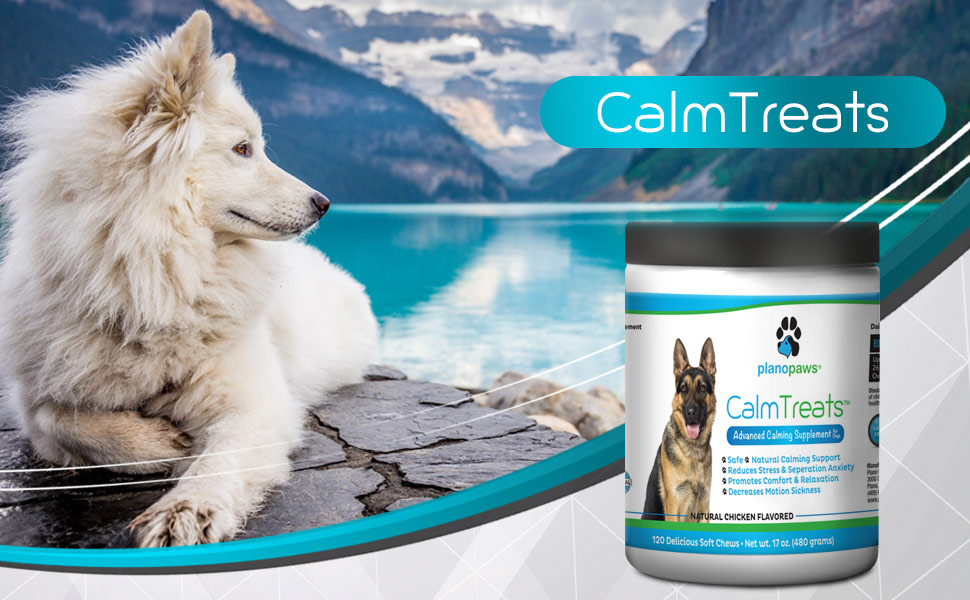 Calm Treats - Safe Calming Treats for Dogs - Dog Anxiety Relief - Natural  Calming Aid - Helps with Separation Anxiety - Motion Sickness - Storms -