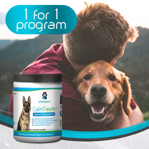 dog anxiety medication dog separation anxiety pet calming products for dogs anxiety relief for dogs