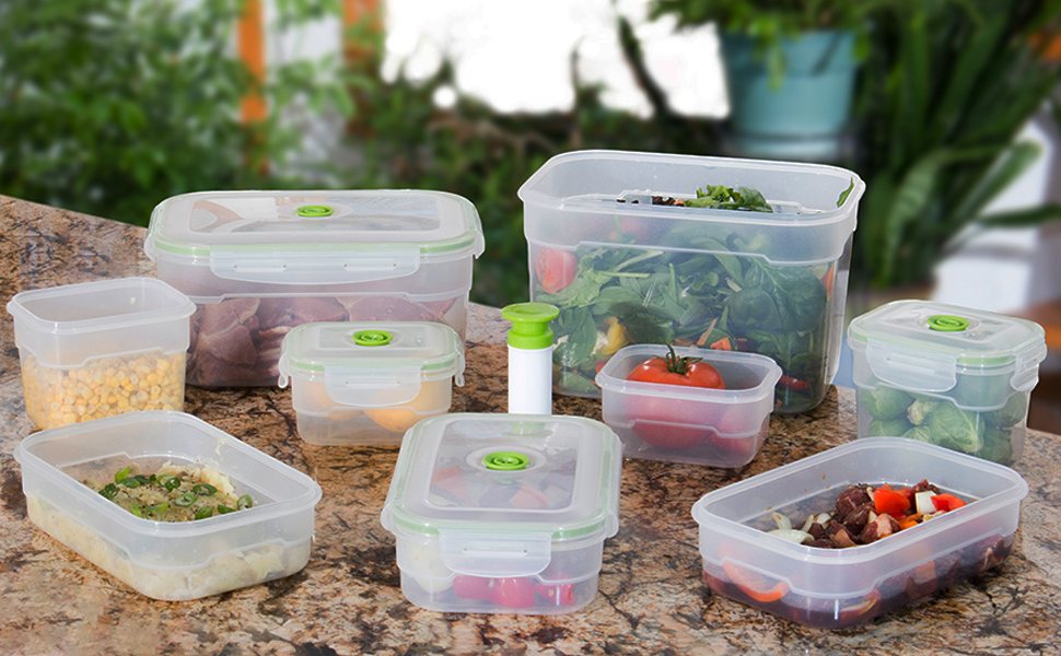 Amazon.com: Lasting Freshness Vacuum Seal Food Storage
