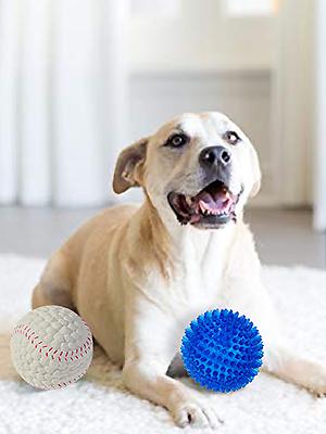 DOG BALL202