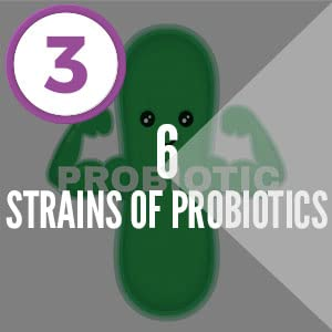 Codeage - SBO Probiotic + 6 Stains