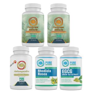 Pure Nootropics   Your #1 Source for Nootropic Supplements