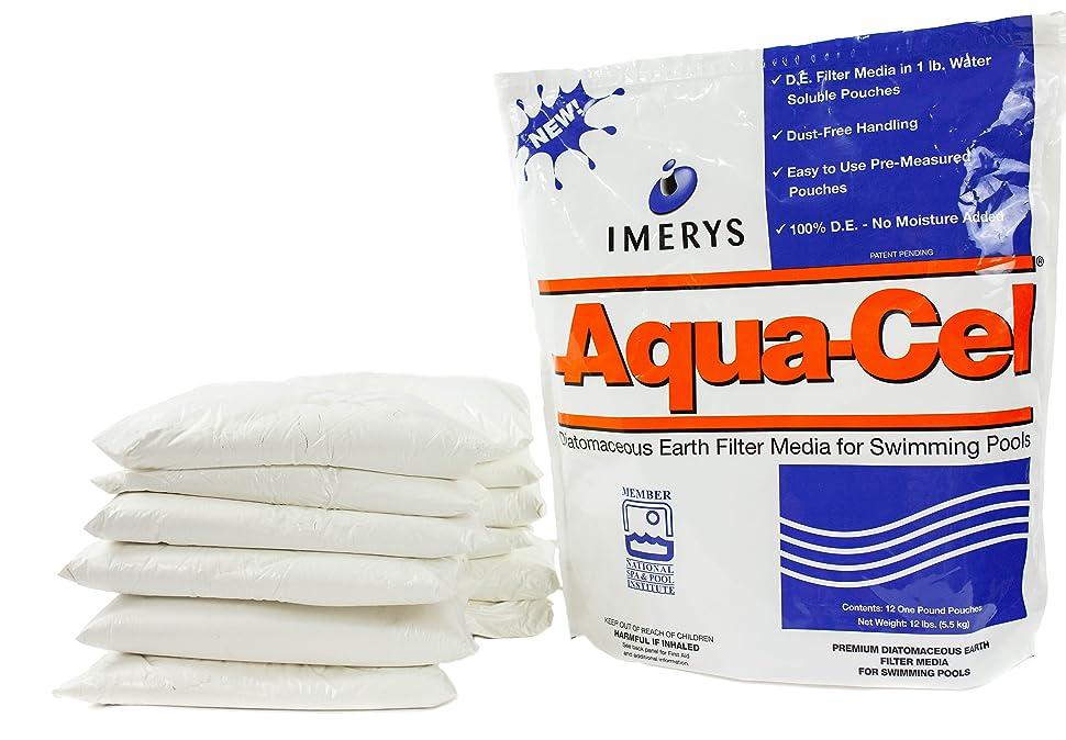 Amazon.com: Aqua-Cel - Filtro diatómico para piscinas de ...