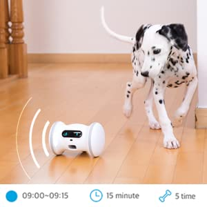 Varram Pet Fitness Scheduled Automatic Play