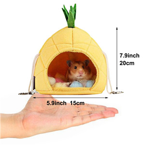 Size comparison between pet pineapple house and hand