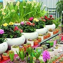 Flower Shop Tools