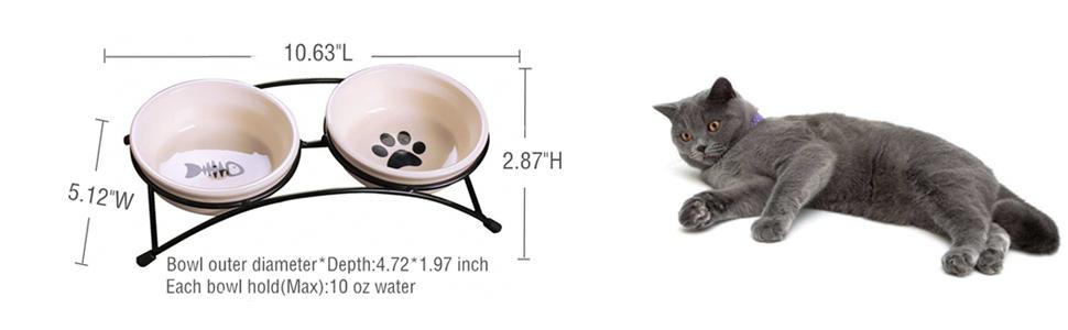 Amazon.com: Doble Gatos de cerámica juego de tazón con ...