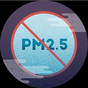 NO PM 2.5