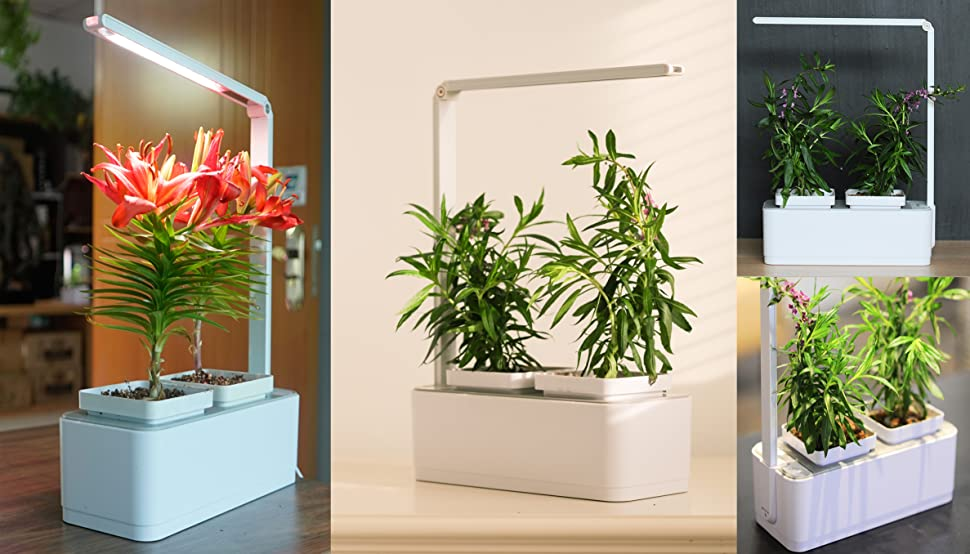 Reusable The Smart Herb Garden Is Designed To Last. Whenever Your Plants  Have Been Harvested You Can Get New Plants And Re Use The Smart Herb Garden  As Many ...