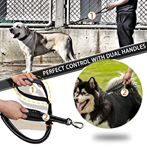 dual handle dog leash