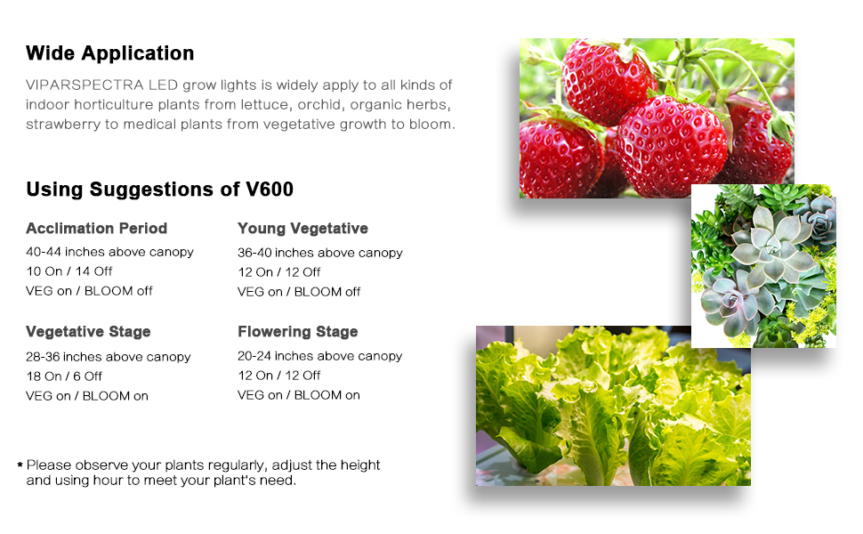 V600 600w led grow light