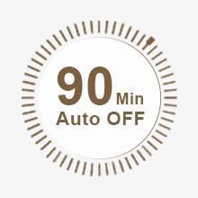 auto off iron