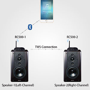 True Wireless Stereo Supported