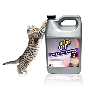 kitten reaching urine off product cat and kitten formula gallon find it treat it kit