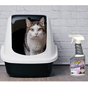 cat liter box cleaner urine off cat spray kitten odor remover careful safe smell