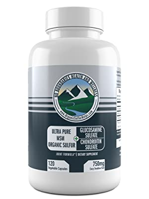 Glucosamine Chondroitin MSM from No Boundaries Health and Wellness