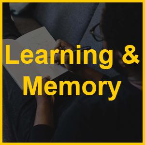 Memory EBC
