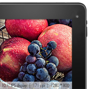 10.1 inch IPS display