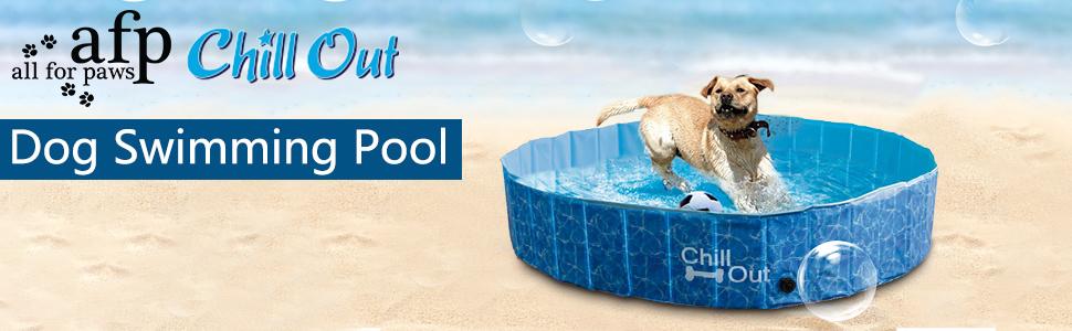 dog pool large