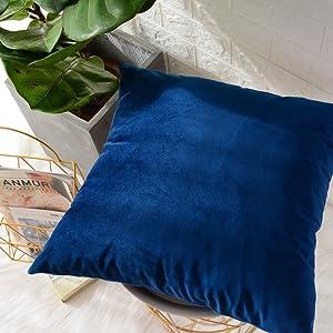 Amazon.com: MerneTTE - Juego de 2 fundas de almohada ...