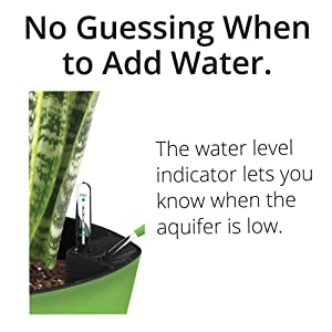 Amazon.com : Aquaphoric Herb Garden Tub - Self Watering