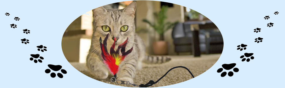 Pet Fit For Life Multi Feather Teaser and Exerciser for Cat and Kitten - Cat Toy Interactive Cat Wand 11