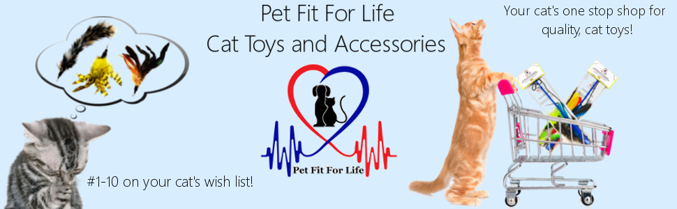 Pet Fit For Life 5 Piece Worms Teaser and Exerciser for Cat and Kitten - Cat Toy Interactive Cat Wand 10
