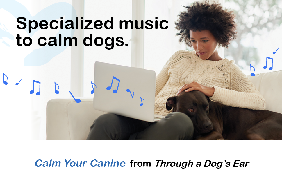 calming dog music, relaxing dog music, music for dogs, dog music, pet tunes, calm your canine