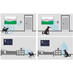 Dog Even Barks At Indoor Noise
