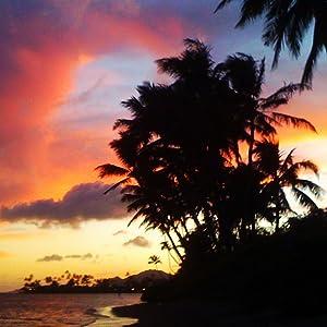 Hawaiian coastline at sunset, with palm tree silhouette