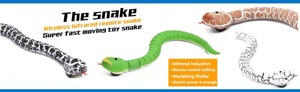 snake banner