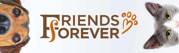 Friends Forever logo