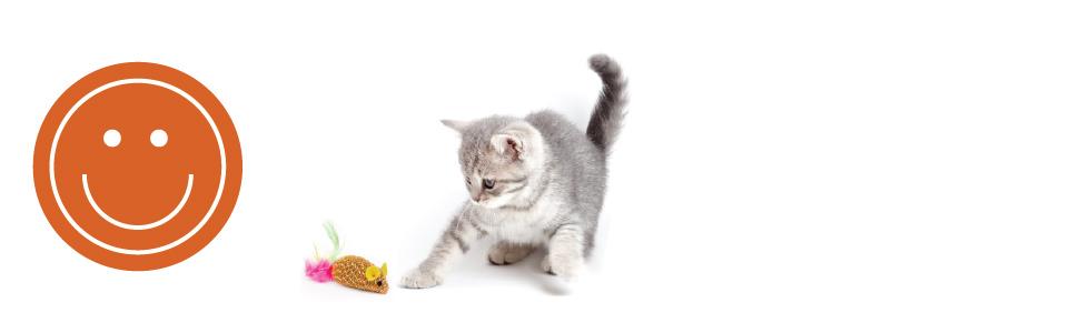 Alegría infinita para unirse con su gato