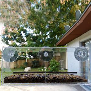 Ashman Deluxe Window Bird Feeder Spacious Design