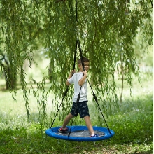 Boy standing on a round tree swing