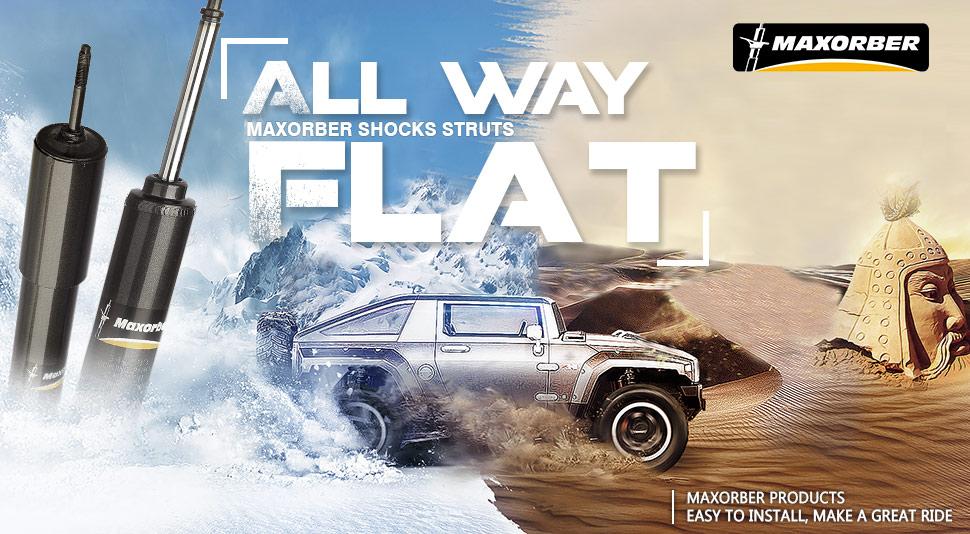 ROADFAR 4x Front Rear Struts Shocks Absorbers Fit for 2008-2010 Chrysler Town /& Country,2008-2010 Dodge Grand Caravan 334673 349073