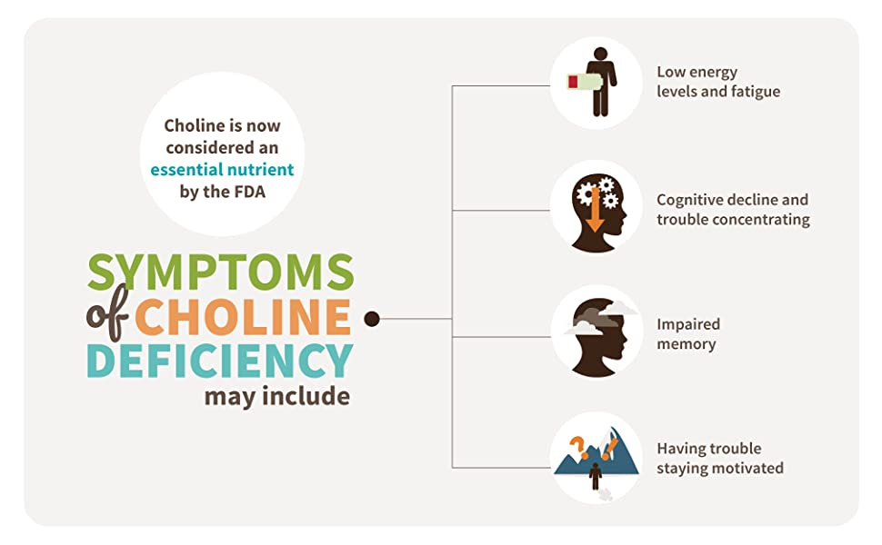 choline deficiency includes low energy and impaired memory