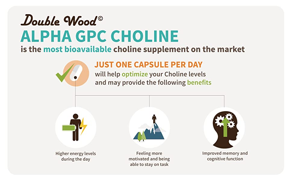 Alpha GPC Choline Supplement (Beginner Nootropic for Brain Support, Focus,  Memory,