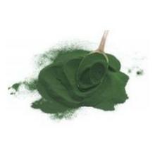 chlorella algae heavy metal cleanse iron iodine immune red blood cells