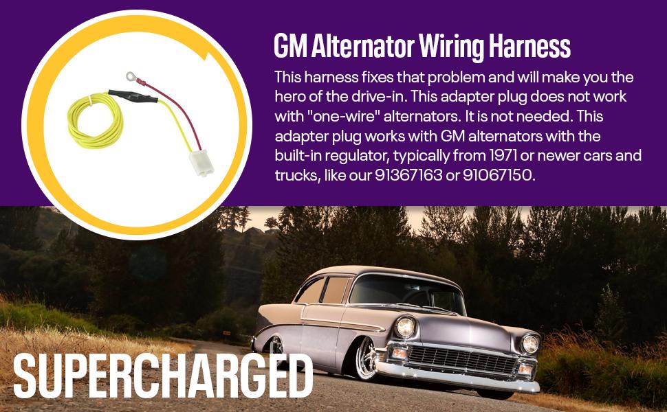 Amazon.com: GM Internally-Regulated Alternator Wiring ... on